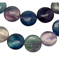 """Perles en pierres gemme, fluorite arc naturel, plat rond, violet, taille: environ 14mm de diamètre, épaisseur de 6mm, Trou: 1.2mm, 26 pcs / chapelet, 15.5""""(G-FL6X14-065-1)"""