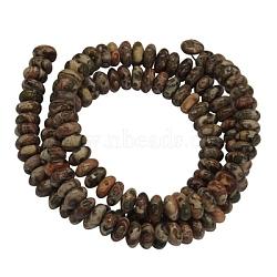 brins de pierres précieuses, jaspe naturel en peau de léopard, rondelle, sur 6 mm de diamètre, 3 mm d'épaisseur, trou: 1 mm, 116 perle / Chapelet, 15.5(Z287Y011)