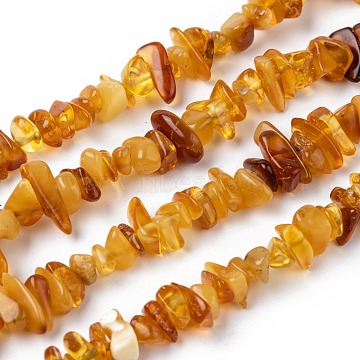 Natural Amber Chip Beads Strands, 5~14x4~10mm, Hole: 1mm, about 15.5 inches~16.1 inches(X-G-E271-81)