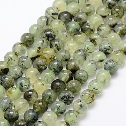 Chapelets de perles en préhnite naturelle, ronde, grade AB, 8mm, trou: 1mm; environ 50 pcs/chapelet, 15.3'' (39 cm)