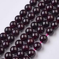 grenat naturels brins de perles, arrondir, 6.5 mm, trou: 1 mm; environ 63 perle / brin, 15.7 (40 cm)(X-G-J376-37-6mm)