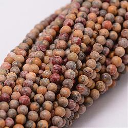 perles de jaspe en peau de léopard naturel, arrondir, 2 mm, trou: 0.5 mm; environ 190 perle / brin(G-N0187-02-2mm)