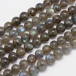 Natural Labradorite Round Bead Strands, Grade A, 6mm, Hole: 1mm; about 66pcs/strand, 15.5 inches(G-M262-6mm-09)