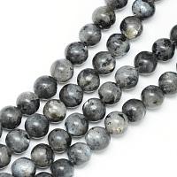 labradorite naturelle rangées de perles, arrondir, 8~9 mm, trou: 1 mm, environ 46 pcs / brin, 15.3 pouces