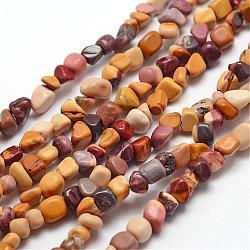 """Chapelets de perles en mookaite naturelles, puce, 3~5x3~5x3~8mm, trou: 1mm; environ 85~90 pcs/chapelet, 15.7"""" (40 cm)(G-F465-23)"""