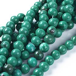 Chapelets de perles en turquoise naturelle, teint, rond, lightseagreen, 8mm, Trou: 0.8mm(TURQ-K004-04-8mm)