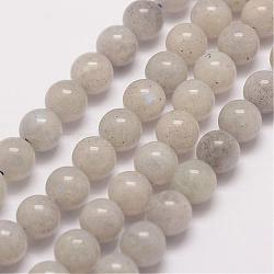 Natural Labradorite Bead Strands, Round, 8mm, Hole: 1mm; about 47pcs/strand, 15.5''