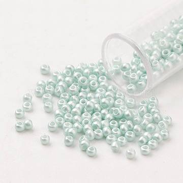 FGB 11/0 Baking Paint Glass Seed Beads, Round, Azure, 2.3x1.5mm, Hole: 1mm; about 5300pcs/50g(X-SEED-N001-A-1031)