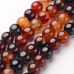 """Chapelets de perles d'agate naturelle, rond, teints et chauffée, chocolat, 10mm, trou: 1mm; environ 38 pcs/chapelet, 15""""(X-G-D845-02-10mm)"""