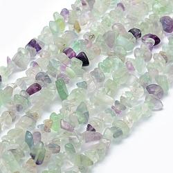 Chapelets de perles en fluorite naturel, puce, 5~8mm, Trou: 1mm; Environ 33'' (84cm)(G-P406-28)