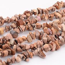 """Image naturelle puces de jaspe perles brins, 5~8mm, trou: environ 0.3 mm, 36"""" longtemps(F002)"""