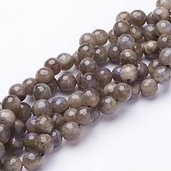 Natural Labradorite Beads Strands, Faceted, Round, 8mm, Hole: 1mm