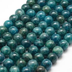 """Chapelets de perles en apatite naturelle, rond, 8mm, trou: 1mm; environ 48 pcs/chapelet, 15.7"""" (40 cm)(G-F475-06-8mm)"""