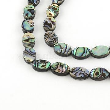 13mm Oval Paua Shell Beads