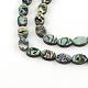 Oval Paua Shell Beads Strands(SSHEL-F290-40B)-1