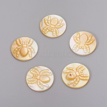 Yellow Shell Cabochons, Flat Round with Spider, 21.5x2.8mm(SHEL-P071-11)