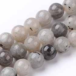 Natural Labradorite Round Bead Strands, 8mm, Hole: 1mm; about 48pcs/strand, 15.74inches