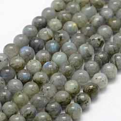 Natural Labradorite Beads Strands, Round, 8mm, Hole: 1mm; about 49pcs/strand, 15.3''(39cm)
