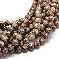 """Brins de perles rondes en jaspe en peau de léopard naturel, 10mm, trou: 1mm; environ 40 pcs/chapelet, 16""""(X-G-P072-45-10mm)"""