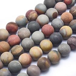 """Amérique naturelle image jasper perles brins, mat, rond, 12mm, trou: 1mm; environ 36 pcs/chapelet, 15.3"""" (39.5 cm)(G-I213-20-12mm)"""
