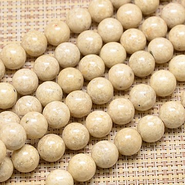 Natural Fossil Round Beads Strands, 8mm, Hole: 1mm;  about 41pcs/strand, 15.7 inches(G-I108-8mm)