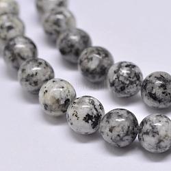 Natural Sesame Jasper/Kiwi Jasper Beads Strands, Round, Gray, 6mm, Hole: 1mm; about 62pcs/strand, 15.1inches (X-G-F351-6mm)
