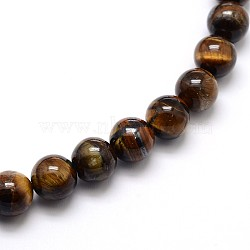 Natural Grade AB Tiger Eye Round Beads Strands, 12mm, Hole: 1mm; about 33pcs/strand, 15.5inches