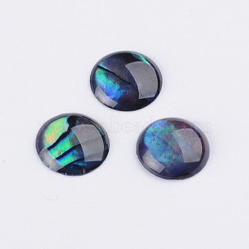 Abalone Shell/Paua Shell Cabochons, Half Round/Dome, Colorful, 8x1~1.5mm(X-SSHEL-K003-8MM)