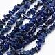 Natural Lapis Lazuli Beads Strands(G-P332-14)-1