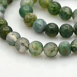 """Agate mousse naturelle chapelets de perles rondes, 8mm, trou: 1mm; environ 50 pcs/chapelet, 15.7""""(G-N0120-30-8mm)"""