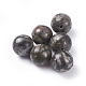 Natural Fossil Beads(G-G782-04)-1