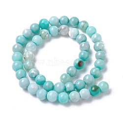 Natural Dyed Agate Imitation Turquoise Beads Strands, Round, PaleTurquoise, 10mm, Hole: 1mm, about 36~38pcs/strand, 14.88inches~15.15''(37.8~38.5cm)