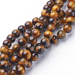 Gemstone Beads Strands, Grade A Tiger Eye, Round, about 8mm in diameter, hole: 1mm; about 46pcs/strand, 15.5inches