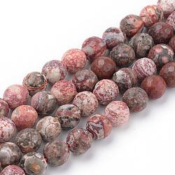 """Perles de jaspe peau de léopard rouge naturel brins, facette, rond, 6~6.5mm, trou: 1mm; environ 63 pcs/chapelet, 15.5""""(G-Q462-88-6mm)"""