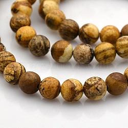 """Rondes image naturelle perles de jaspe brins, 6mm, trou: 1mm; environ 61 pcs/chapelet, 15.7""""(G-N0120-24-6mm)"""