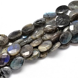 Flat Oval Natural Labradorite Bead Strands, Faceted, 10x8x4mm, Hole: 1mm; about 40pcs/strand, 15.74inches