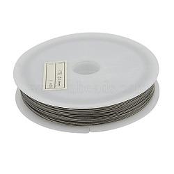 Fil de queue de tigre, acier revêtu de nylon, gris argenté, 0.35 mm de diamètre, environ 50 m / bibone (X-L0.35MM01)