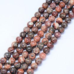 perles de jaspe en peau de léopard naturel, arrondir, 10 mm, trou: 1 mm; environ 38 perle / brin, 15.5 (39.5 cm)(X-G-J358-05-10mm)