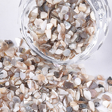 Shell Beads, For Nail Art Decoration Accessories, No Hole/Undrilled, Chips, FloralWhite, 1.5~5x1~3x0.5~2mm(X-MRMJ-S034-08)