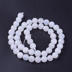 """Chapelets de perles en pierre de lune naturelle, grade AB, rond, 8mm, trou: 1mm; environ 50 pcs/chapelet, 15.3"""" (39 cm)(G-G970-37-8mm)"""