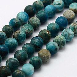 """Chapelets de perles en apatite naturelle, rond, mat, 7.5~8mm, trou: 1mm; environ 47 pcs/chapelet, 14.9""""~15.3""""(G-K193-8mm-12)"""