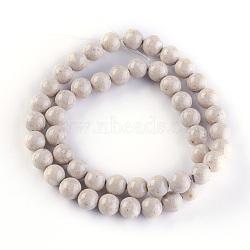 """Perles en fossile naturelle, rond, 8mm, trou: 1mm; environ 49 pcs/chapelet, 15.7"""" (40 cm)(G-E508-01-8mm)"""