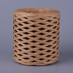 Eco-Friendly Raffia Paper Cords, Gift Box String/Cord, Camel, 4mm, about 218.72 yards(200m)/roll(OCOR-WH0046-01)