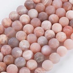 матовое круглые нити шарик натуральный Sunstone, 8 mm, отверстия: 1 mm; о 48 шт / прядь, 15.74(X-G-L357-8mm-06)