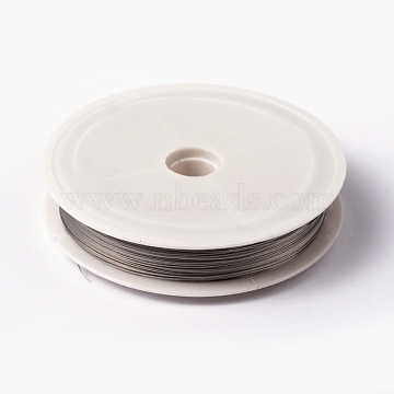 Tiger Tail Wire, Nylon-coated Stainless Steel, Silver, 0.38mm, about 164.04 Feet(50m)/roll(X-L0.38mm01)