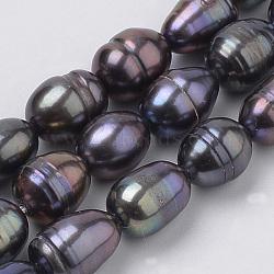 нити из натурального культивированного пресноводного жемчуга, рис, slateblue, 8~10x6.5~7 mm, отверстия: 0.5 mm; о 20 шт / прядь, 7.34(X-PEAR-S012-36)