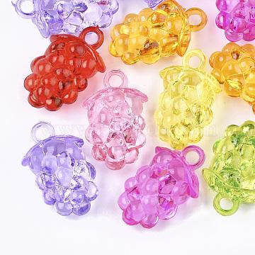 Mixed Color Fruit Acrylic Pendants