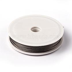 1 rouleau de perles, fil de queue de tigre, acier revêtu de nylon, gris clair, taille: environ 0.6mm de diamètre, 40m/rouleau(X-TWIR-40R0.6MM-1)