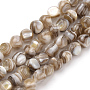 6mm Tan Round Freshwater Shell Beads(X-SSHEL-Q300-006B)