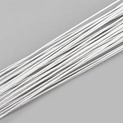 железная проволока, WhiteSmoke, 0.6 мм; 60 см / нитка; о 50 пряди / мешок(X-MW-S002-02F-0.6mm)
